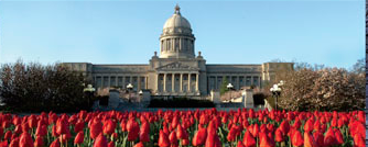 I look forward to the tulips blooming in front of the Capitol because that means the 2014 session will be OVER!!